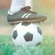 Befristung von Arbeitsvertraegen von Bundesligaspielern