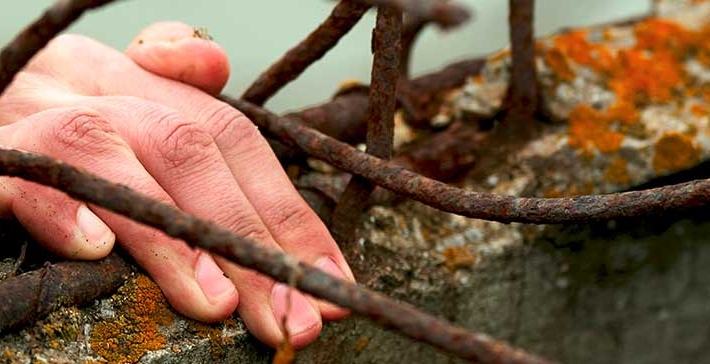 Hand auf einer Mauer mit Stacheldraht